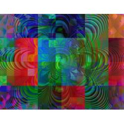Multi Colored Petals (2003)