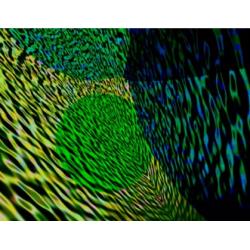 Solar Waves 12 (2001)