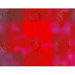Cryptic Subtrofuge (2005)