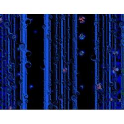 Cosmic Curtain 1 (2004)