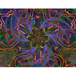 Floral Imprint (2003)