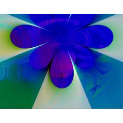 Flower Power 3 (2003)