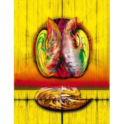 Nautilus Sounds - 1995